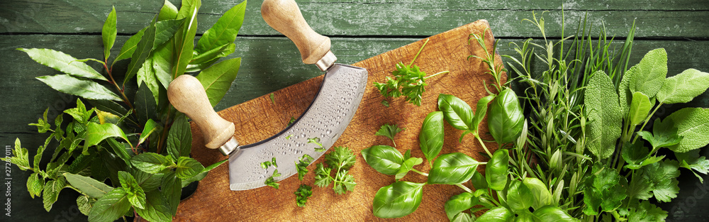 Fototapety, obrazy: Mezzaluna knife on a chopping board with herbs