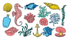 Sea Shell, Seaweed, Anchor, Seahorse, And Fish. Hand Drawn Underwater Colorful Creatures.