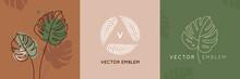 Vector Abstract Logo Design Te...