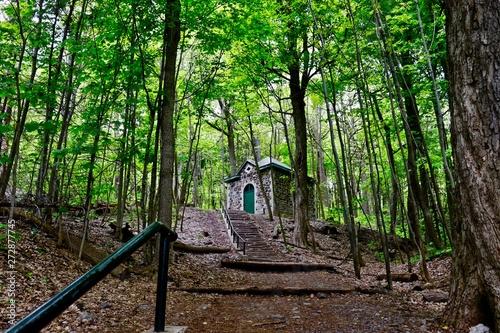 Fototapeta Mont Royal Park obraz na płótnie