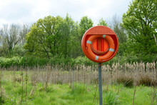 Bright Orange Life Belt On A Pole Near A Deep Pond Filled With Bulrushes