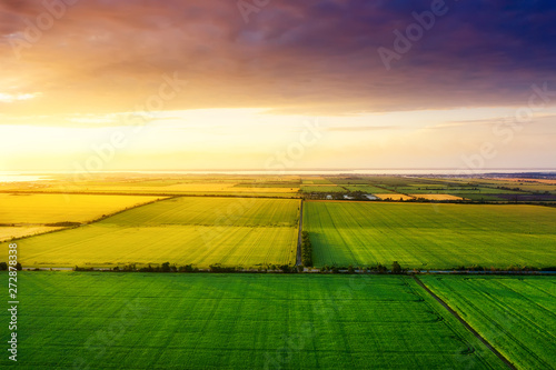 Garden Poster Culture Aerial view on the field during sunset. Landscape from drone. Agricultural landscape from air. Agriculture - image
