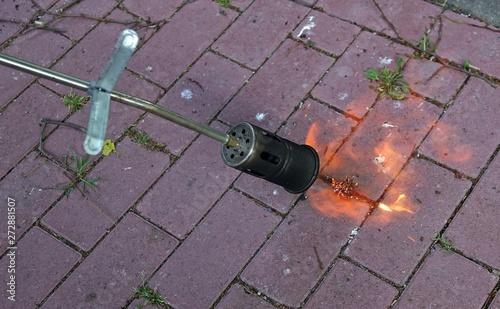 Photo unkraut abflammen