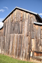 Vintage Wooden, Chicken Coop And Split-rail Barbed Wire Fence