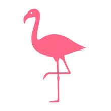 Pink Flamingo Bird Flat Vector...