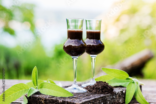Glass with a drink from bog for detoxification and purification of the intestine