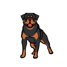 Rottweiler Dog - Isolated Vect...