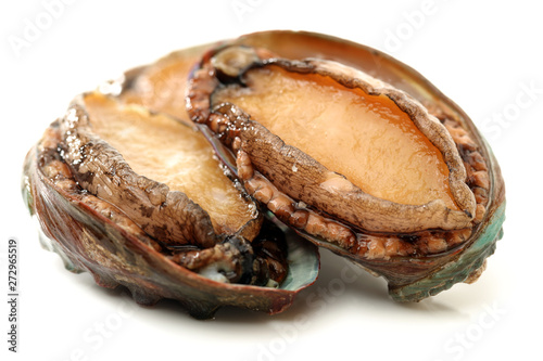 Raw abalones on the white background Canvas Print