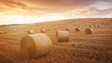 Straw Bales Are The Beautiful Scenery