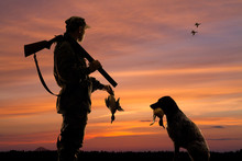 Hunter And His Dog With Downed Duck At Sunset