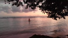 Fantastic Drone Shot Through A Tree Towards A Woman Wading Through Beach Waters During A Beautiful Sunset
