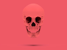 Pink Flying Skull On A Pink Ba...