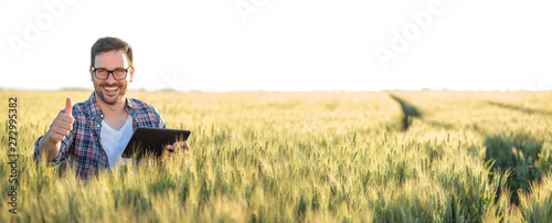 Fototapeta Smiling happy young farmer or agronomist using a tablet in a wheat field. Showing thumbs-up and looking directly at camera. Wide angle panoramic photo. Organic farming and healthy food production obraz