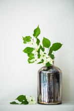 Dogwood Branch In Mercury Glass Vessel