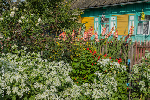 Traditional rural landscape in Russia. Village house in summer.