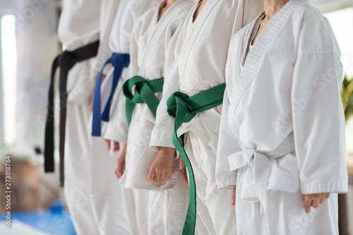 Children wearing colorful belts standing near trainer with black belt