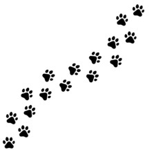 Black Footprints Of Dogs. Paw ...