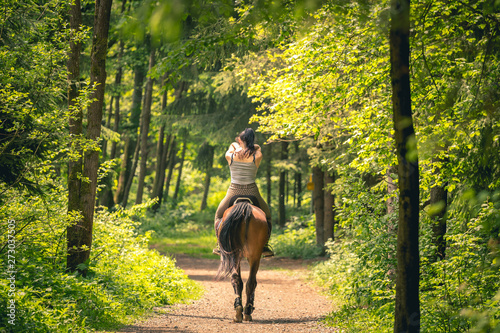 Obraz na płótnie Beautiful woman riding a horse in the forrest, soft background, shot form behind