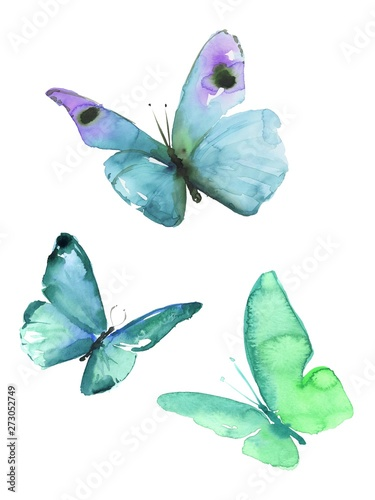 Fototapeta  Watercolor colorful butterflies, isolated on white background blue, turquoise butterfly illustration
