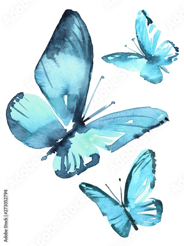 Obraz na plátně  Watercolor colorful butterflies, isolated on white background blue, butterfly illustration