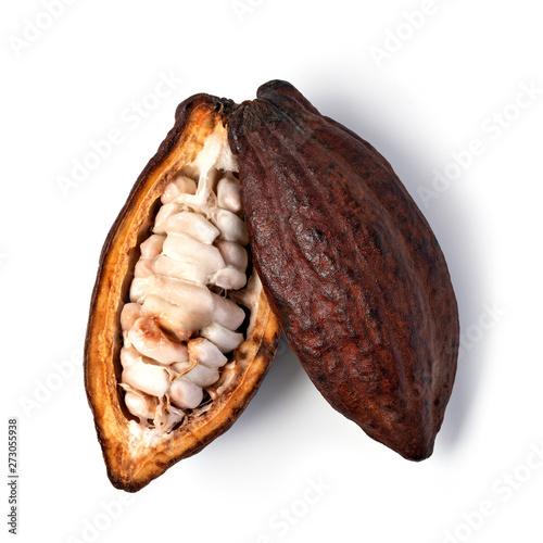Cocoa pod on a white background - 273055938