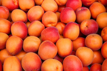 Apricots In The Market