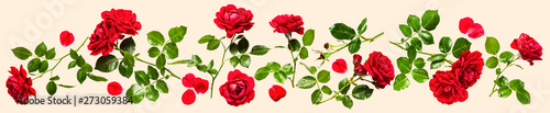 Red roses composition
