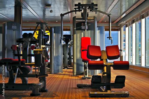 Moderne Fitnessgeräte mit roter Lederbespannung in Sportstudio auf Kreuzfahrtschiff - 273096944