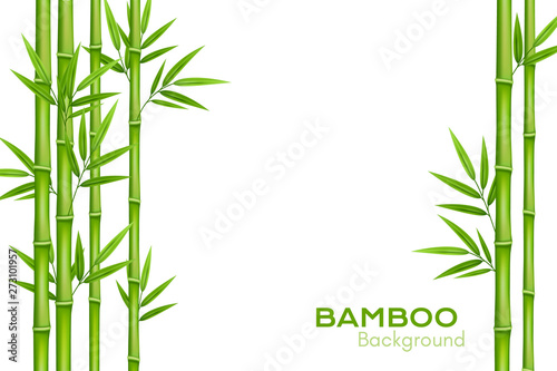 Bamboo background with place for text Wallpaper Mural