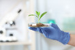Scientist holding Petri dish with green plant in laboratory, closeup. Space for text
