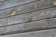 Beautiful wood style wall texture with small details.