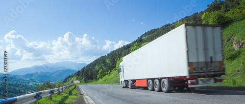 Fotografie, Obraz  White truck arriving on asphalt road in rural landscape