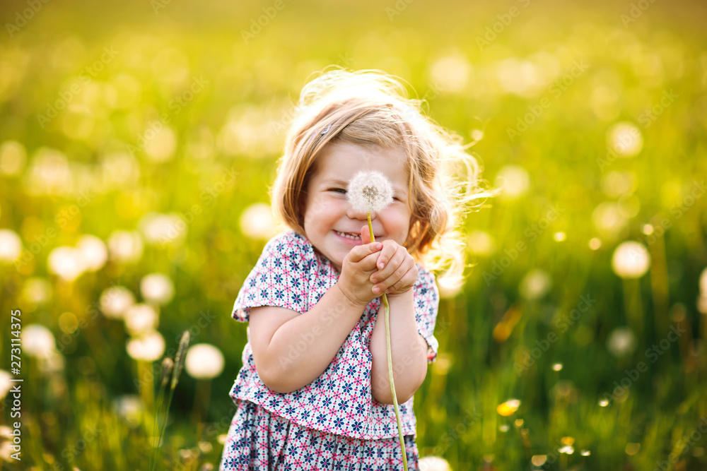 Fototapety, obrazy: Adorable cute little baby girl blowing on a dandelion flower on the nature in the summer. Happy healthy beautiful toddler child with blowball, having fun. Bright sunset light, active kid.