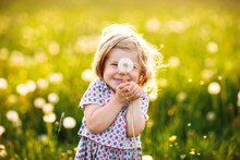 Adorable Cute Little Baby Girl Blowing On A Dandelion Flower On The Nature In The Summer. Happy Healthy Beautiful Toddler Child With Blowball, Having Fun. Bright Sunset Light, Active Kid.