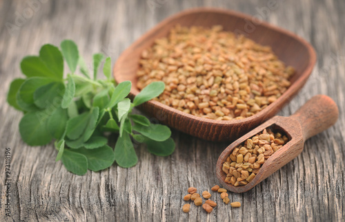 Fenugreek seeds with green leaves