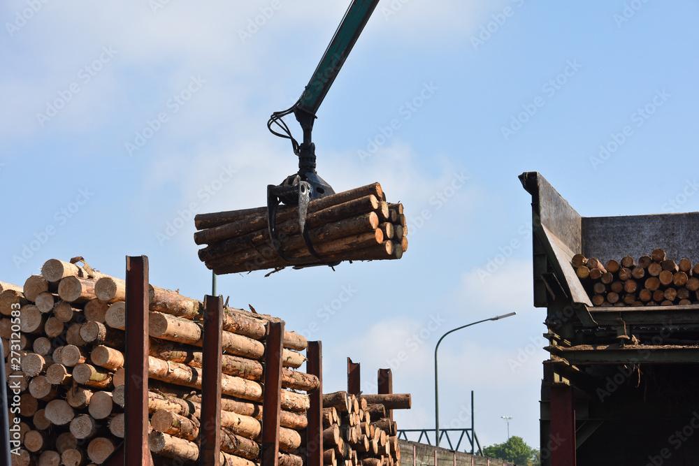 Fototapety, obrazy: scierie bois industrie scier grappin