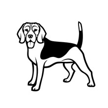 Beagle Dog - Isolated Outlined Vector Illustration - Vector