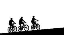Silhouette  Cyclists Bicycle Riders On White Background.
