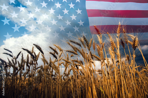 Photographie Double exposure with the american flag and  wheat.