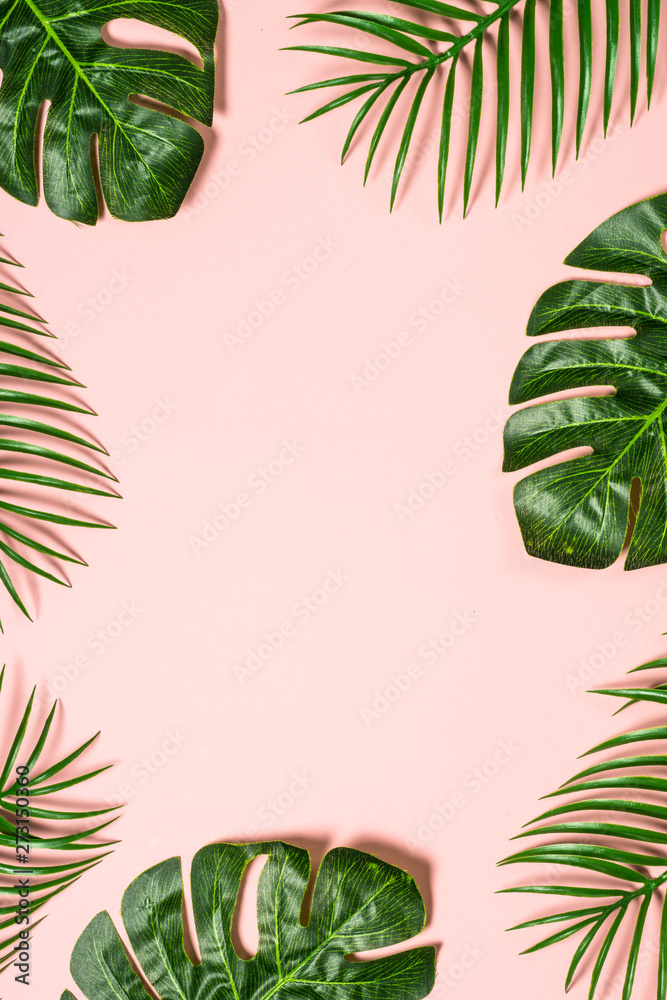 Fototapety, obrazy: Tropical leaves on pink background.