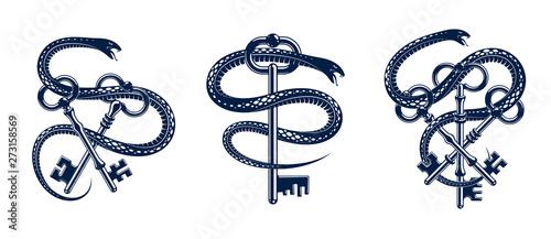 Fotografía  Snake wraps around vintage key, protected secret concept, turnkey and serpent old style tattoo, vector symbol logo or emblem