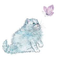 Watercolor Cute Fluffy Cat With Butterfly. Watercolor Graphic For Fabric, Postcard, Greeting Card, Book, Poster, Tee-shirt. Illustration, Isolated Objects.