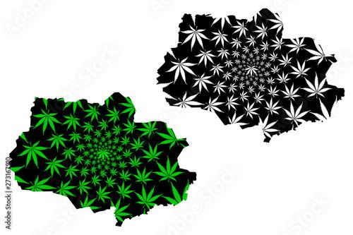 Где купить марихуану томск можно ли курить марихуану при отравление
