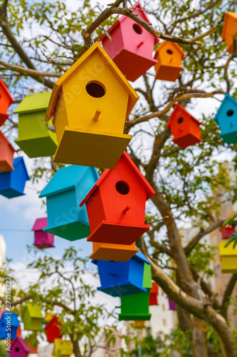 Photo  Many small decorative birdhouses on a mandarin tree