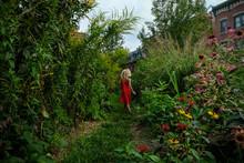Girl Walking Through Overgrown Garden In Orange Dress