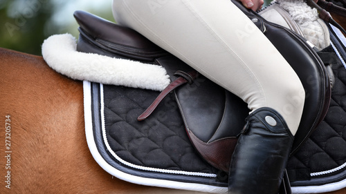 Fotografie, Obraz Rider on horse at a show jumping competition