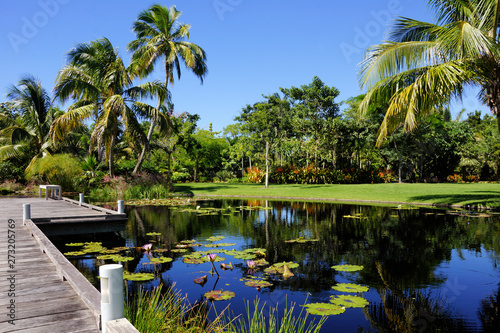 Naples, Florida, United States botanical garden with water feature pond decorative walkway with tropical palm trees and water lillies