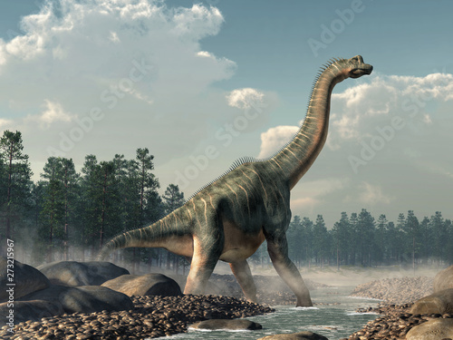 Brachiosaurus was a sauropod dinosaur, one of the largest and most popular Canvas Print
