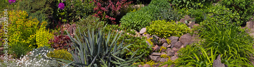 Yucca, stonecrop, hibiscus, daylily, holly, bush, cinquefoil, ilex, potentilla, berberis, barberry, sedum, thuja in the rock garden Fototapeta