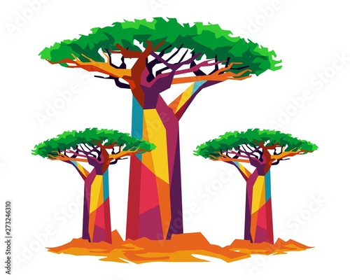 Photo baobab tree for backgroud and vector illustration